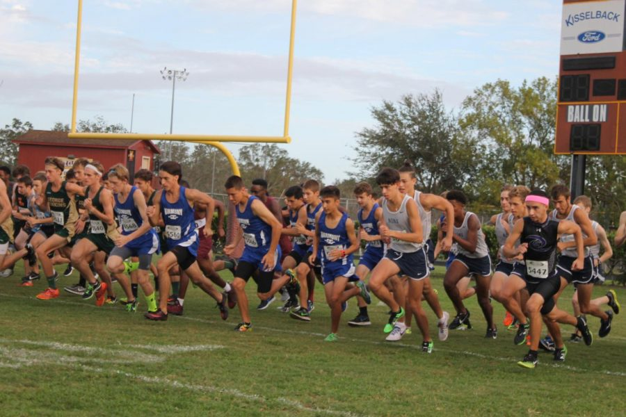 Boys Cross Country team ready to run at the St. Cloud Invitational