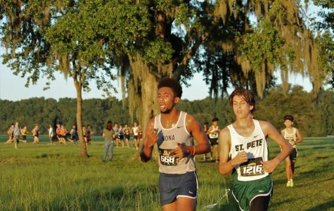 Loss of last year's seniors shake up cross country
