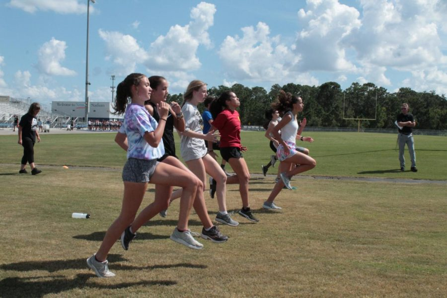 Girls Cross Country Comes Up Short at Horse Park Invitational Meet